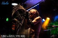 Element A440 - Discography (2005-2013) MP3