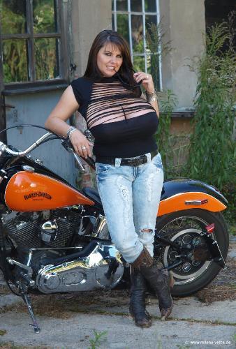 New Harley Pics (2009 sep)