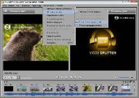 SolveigMM Video Splitter 5.2.1605.23 Business Edition Multilingual Portable