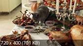 Леди-кошка (2001) HDRip от ImperiaFilm