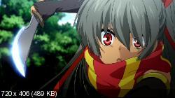 Академия Драконьих Наездников / Seikoku no Dragonar [12 из 12] (2014) BDRip | L2