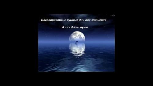 Дудник Ирина - Очищение кишечника от А до Я (2015)