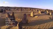 Nat Geo Wild: Мир дикой природы [Cерии: 1-13 из 13] (2016) HDTVRip от Kaztorrents