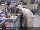 Противостояние / The Stand [01-04 из 04] (1994) DVDRip | P, A